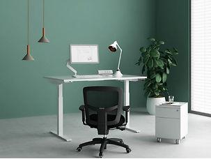Home Office 6.JPG