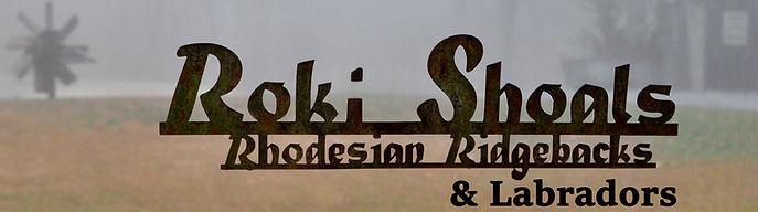 RokiShoals Rhodesian Ridgeback