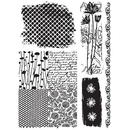Nature & Scripts