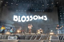 Blossoms-Leeds