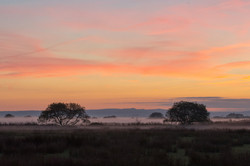 Sunset over the sussex downs