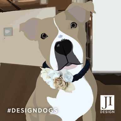 Design Dogs - Callie