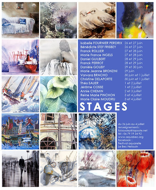 fiche wix face book stages.jpg