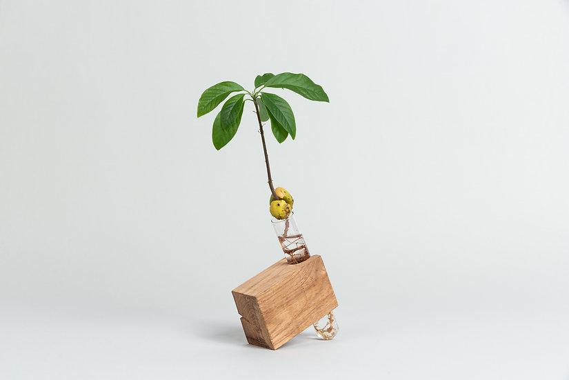 Oak Wood Brick Propagation vase