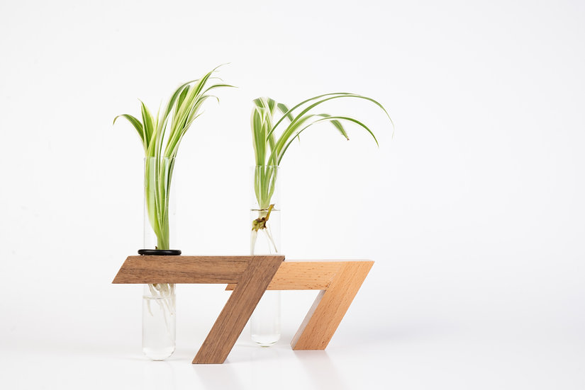 HERBA set of 2 propagation test tube vase and recycled wood