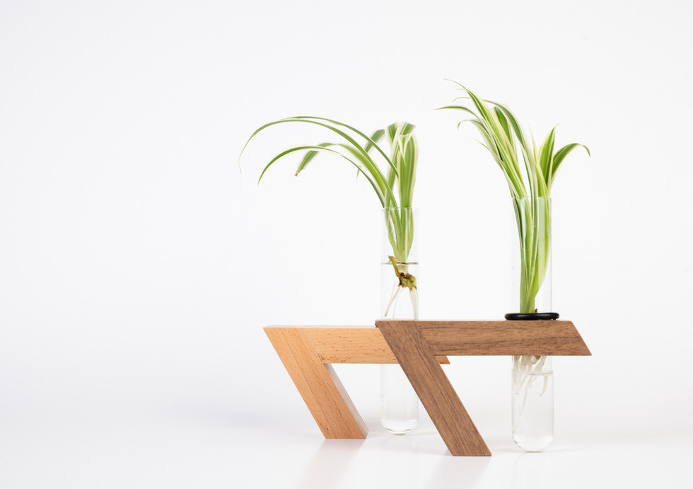 Shinshin Herba Popagation Vases