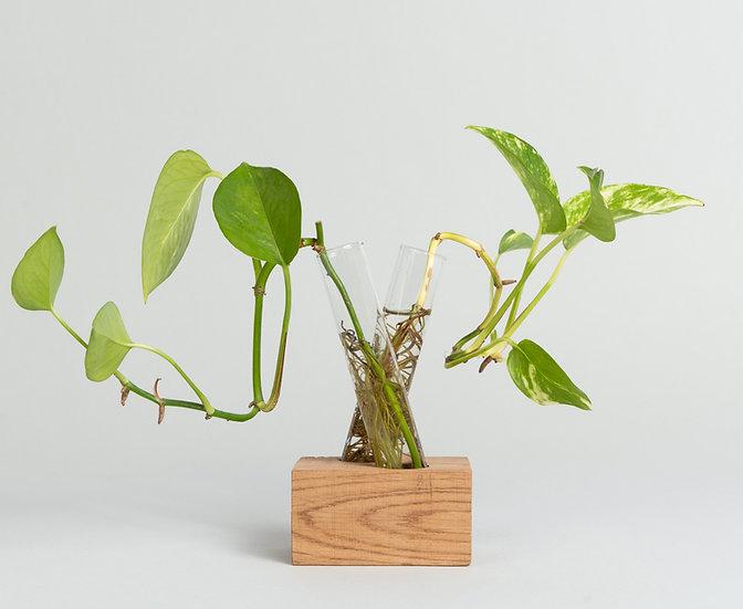 X Wood Brick Propagation vase