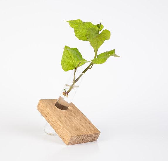 Bohemica Oak Wood Propagation Test Tube Vase