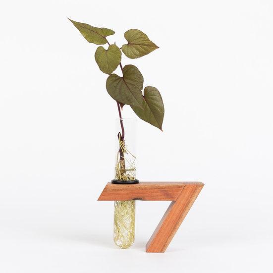 Herba Eucalyptus wood plant holder test tube vase