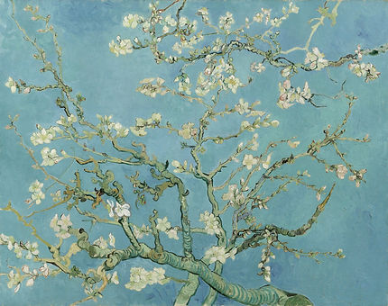 Vincent_van_Gogh_-_Almond_blossom_-_Google_Art_Project_edited.jpg