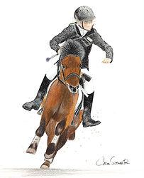 Portrait chevaux