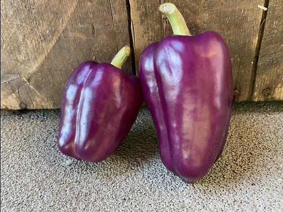 Poivrons violets