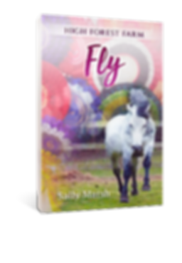 fly-SM-3D.png
