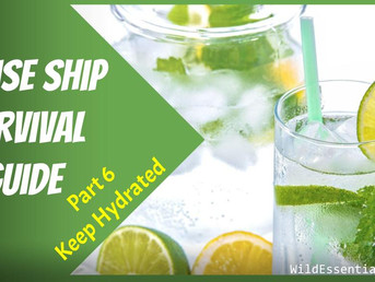 Cruise Ship Survival Guide - Part 6 - Keep Hydrated - Tips for Avoiding Gastro & Staying Healthy