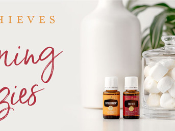 DIY Cleaning Fizzies with Citrus Fresh, Thieves and Lemon Essential Oils