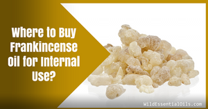 Where to buy frankincense essential oil for internal use