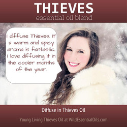 Thieves oil diffused in winter
