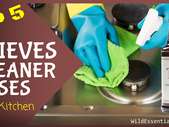 Top 5 Thieves Household Cleaner Uses In The Kitchen