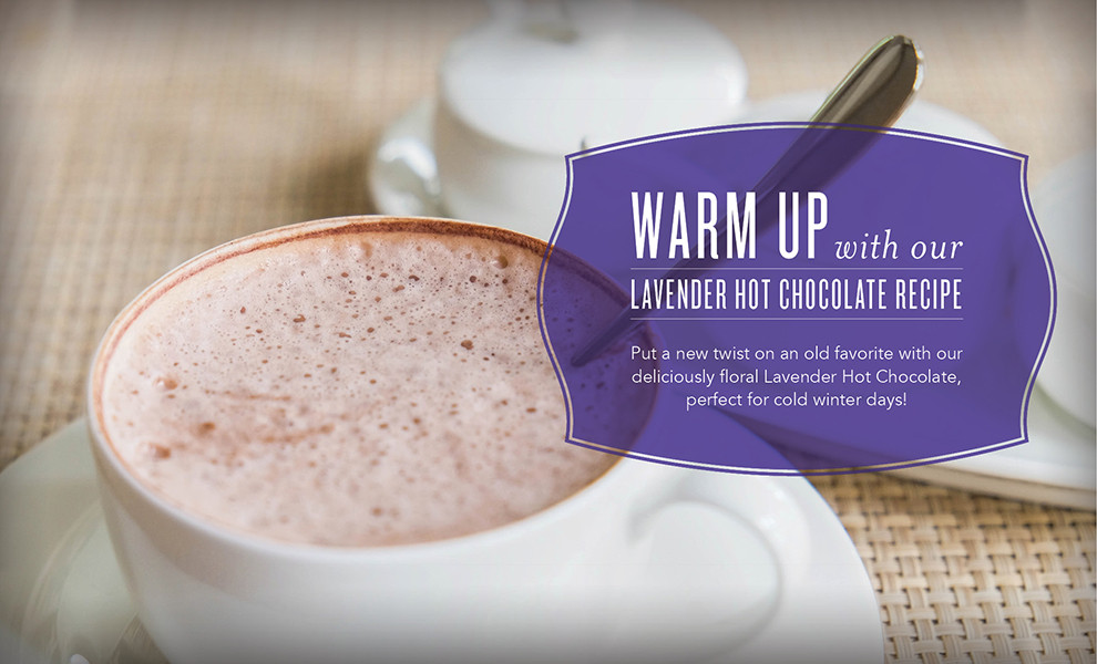 Lavender Hot Chocolate Recipe with Lavender Essential Oil