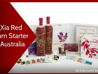 Buy the NingXia Red Premium Starter Kit in Australia