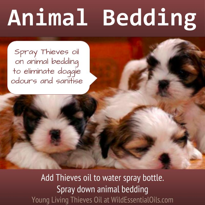 Thieves oil for animal bedding
