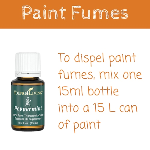 Peppermint essential oil Paint Fumes