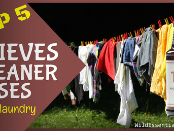 Top 5 Thieves Cleaner Uses in the Laundry
