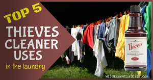 Top 5 Thieves Cleaner Uses in Laundry Australia