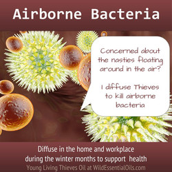 Thieves oil for airborne bacteria
