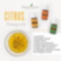 citrus viaigrette recipe.png
