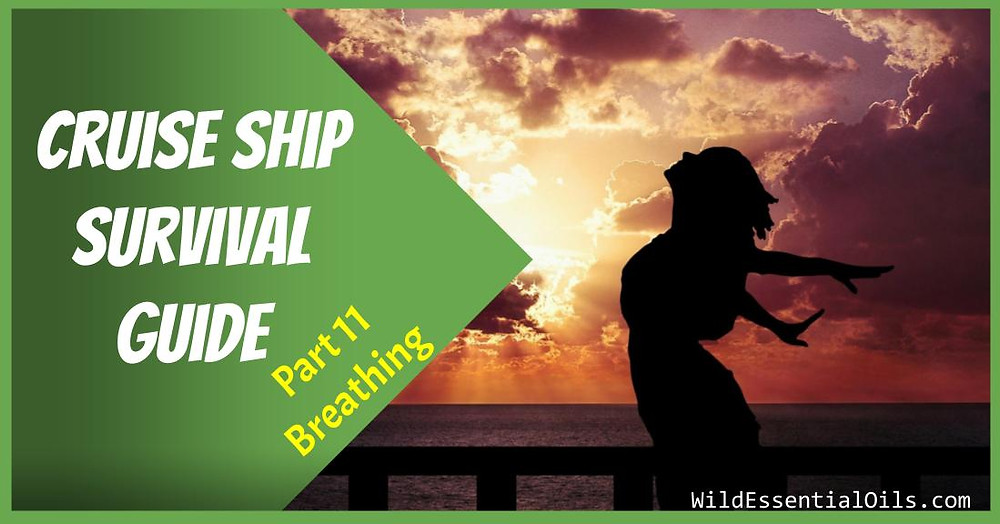 Cruise Ship Survival Guide - Easy Breathing