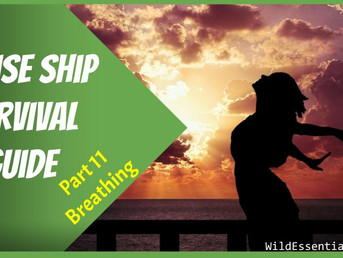 Cruise Ship Survival Guide - Part 11 - Better Breathing - Tips for Avoiding Gastro & Staying Healthy