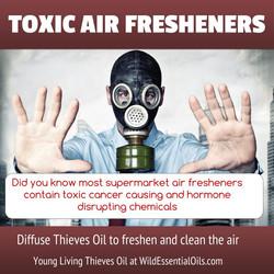 Thieves oil air freshener