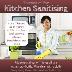 Thieves oil kitchen spray cleaning