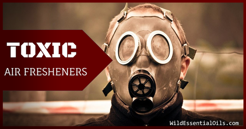 Toxic Air Fresheners