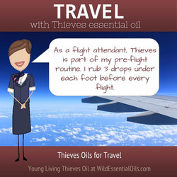 Thieves for flight travel