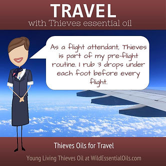 Thieve oil for planes
