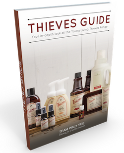 Thieves Guide