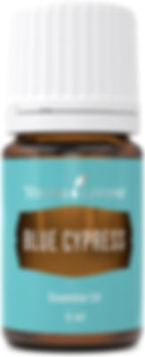 Young Living blue cypress therapeutic food grade essential oil