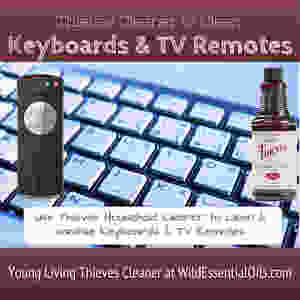 Thieves Cleaner for keyboards