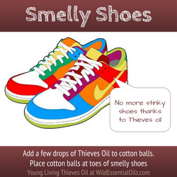Thieves oil stinky shoes.jpg