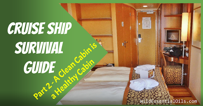 Cruise Ship Survival Guide Clean Cabin
