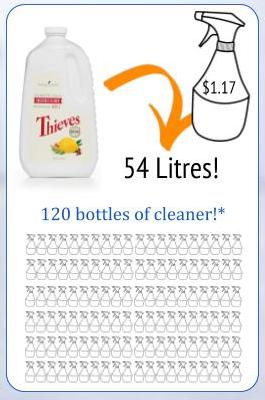Thieves Cleaner spray bottle 1.8l.jpg