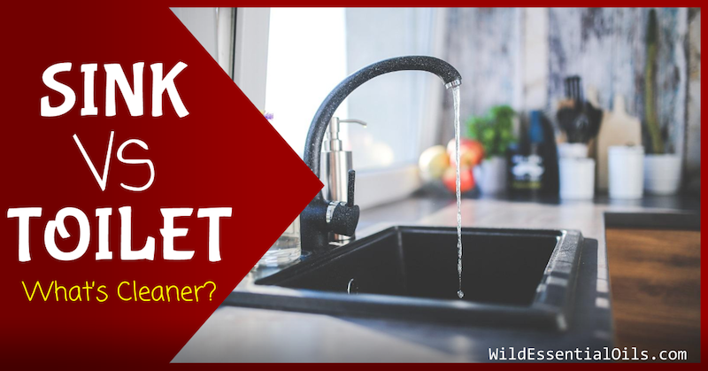 Could your toilet be cleaner then your sink?