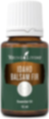 Young Living Balsam Fir therapeutic food grade essential oil