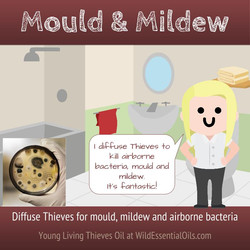 Thieves diffused for mold & mildew