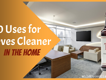 20 Thieves Cleaner Uses in the Home