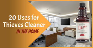 Top 20 Thieves Cleaner Uses in the Home