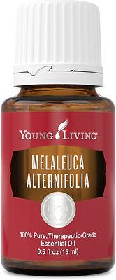 Young Living tea tree essential oil Australia