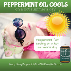 Peppermint essential oil for cooling